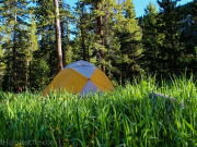 Image for Indian Peaks Wilderness Area