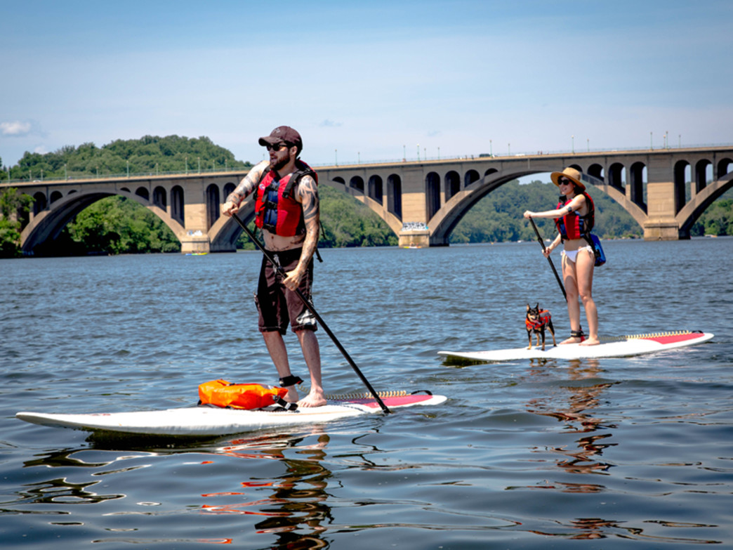 Man, woman, dog—everybody loves to stand up paddle