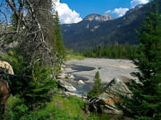 Image for Boulder Basin Trail