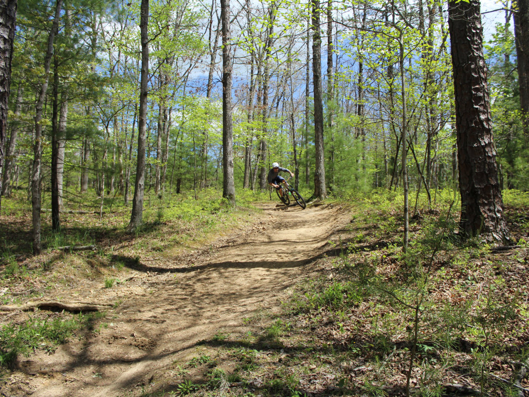 Mountain bikers will find plenty of singletrack to explore in Southwest Virginia.