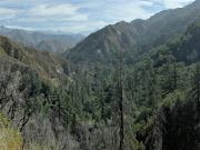 Image for West Fork San Gabriel