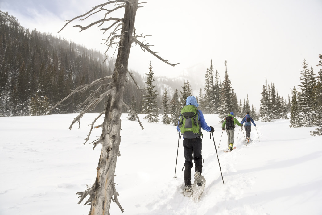 Snowshoeing in the snowy backcountry of Rocky Mountain National Park.