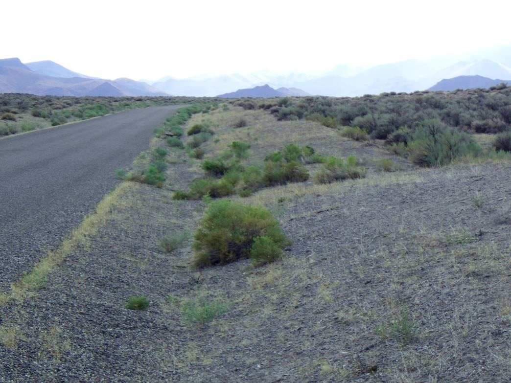 The Owyhee Byway is a remote gravel road that stretches through the Owyhee Canyonlands Wilderness.