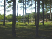 Campgrounds in Elberta, AL