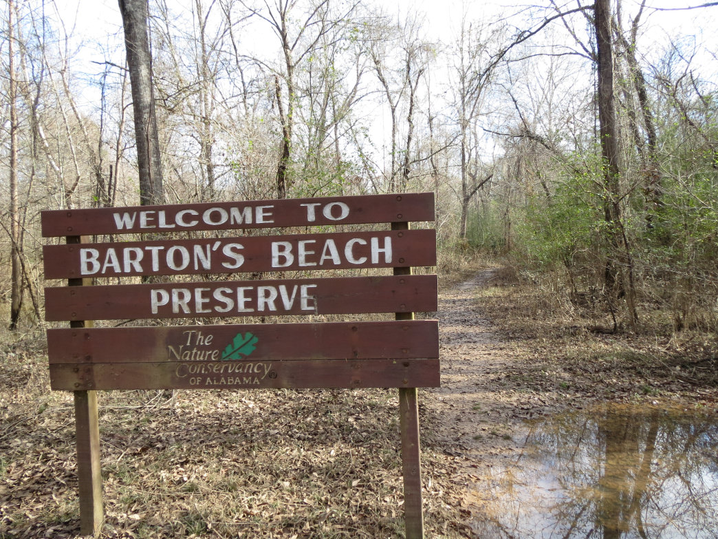 The 125-acre Barton's Beach Preserve is a riverfront gem.     Joe Cuhaj