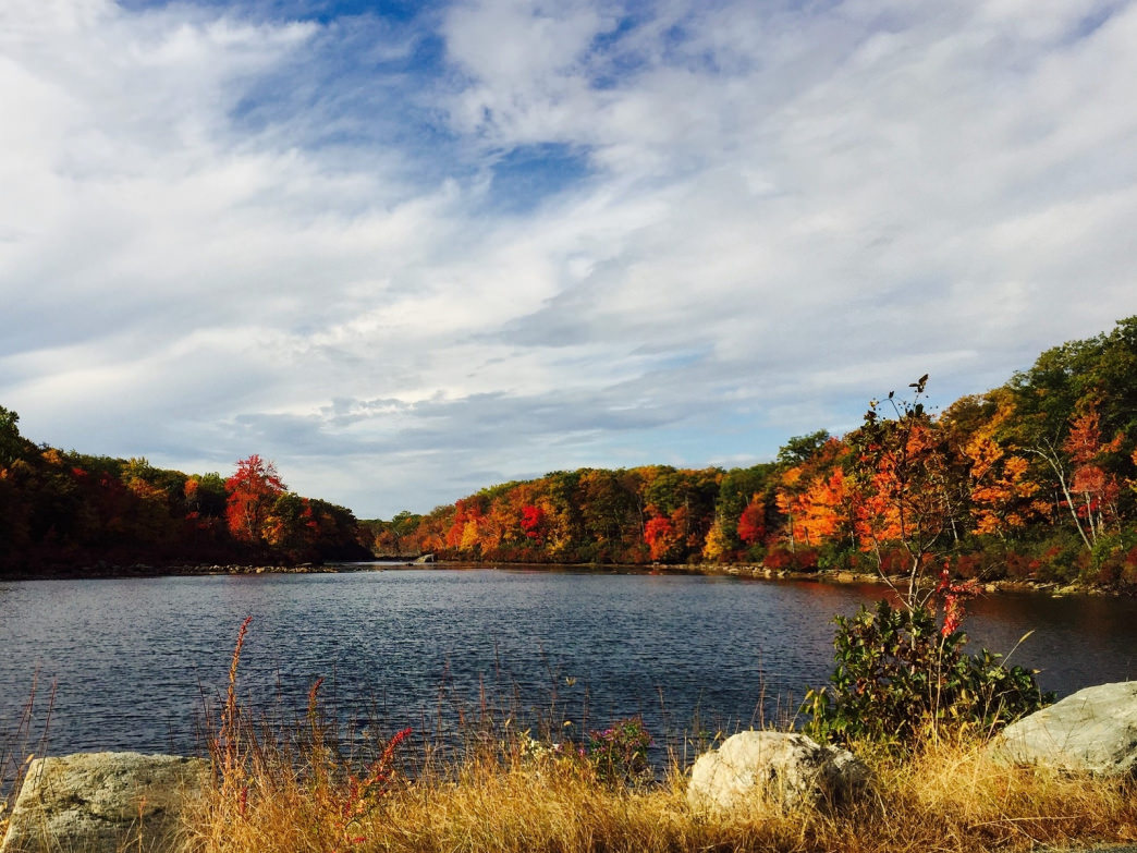 The changing leaves at Harriman State Park