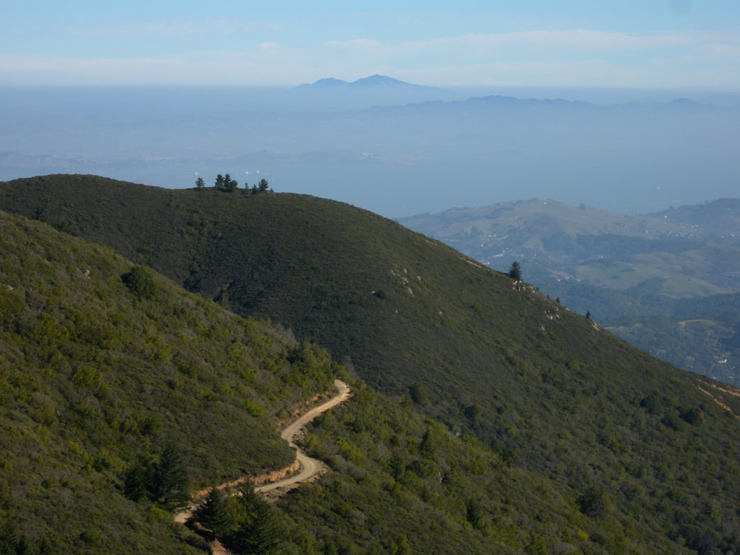 The Old Railroad Grade climbs up Mt. Tam.