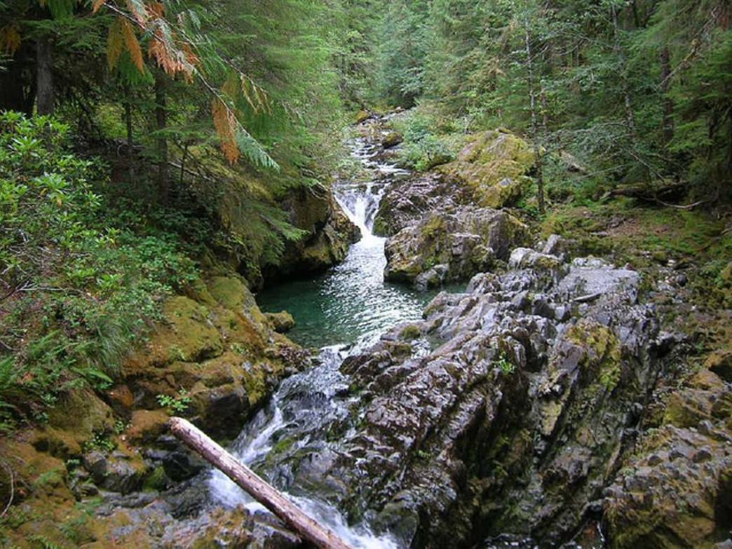 The Opal Creek Wilderness hosts beautiful forest scenery and is easily accessible from Salem.