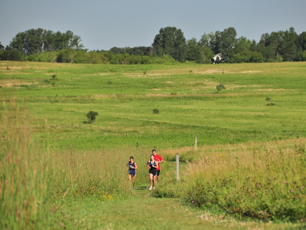 Trail running at Afton State Park