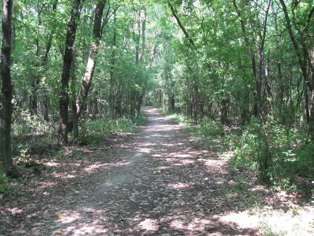 Deer Grove Forest Preserve offers miles of off-road running.