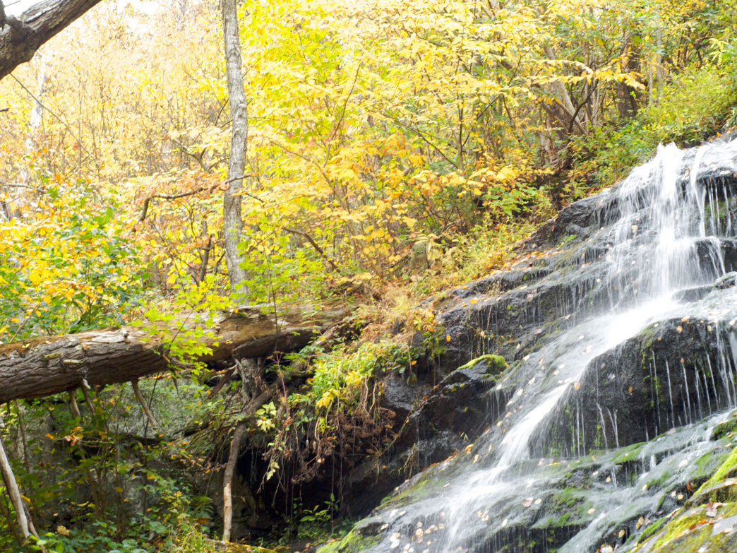 Crabtree Falls is the highest in the Virginia Blue Ridge, and a very popular hiking destination.