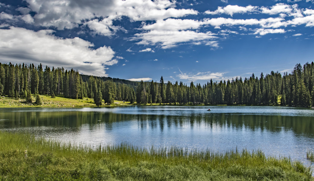 Studies show time spent in the outdoors, such as here in the Grand Mesa National Forest, lowers stress and increases productivity.
