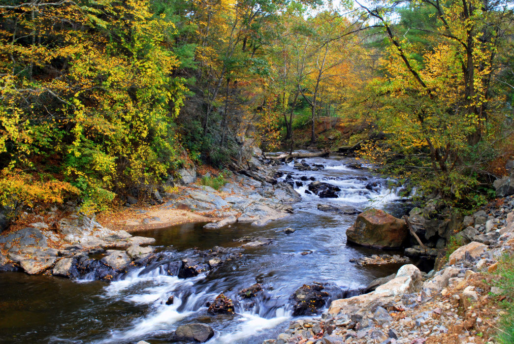 There are many gorgeous spots along the New River, like this one near Galax, VA.