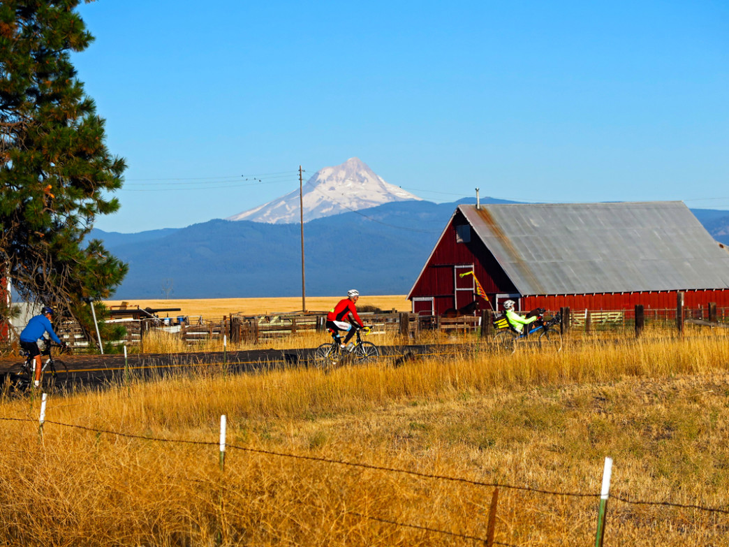 Cyclists travel through Central Oregon farmland in 2014.