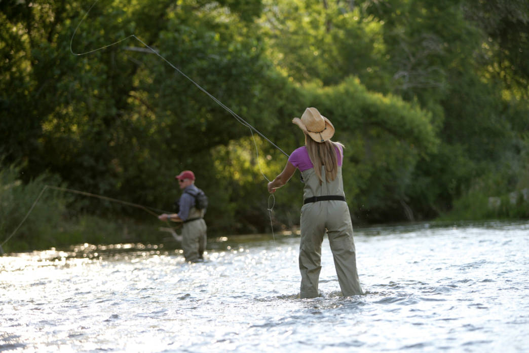 Fly fishing for trout on Ogden's rivers.