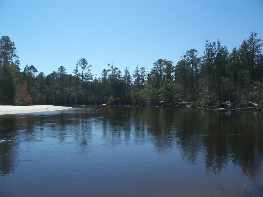 A portion of Blackwater River in Blackwater River State Park