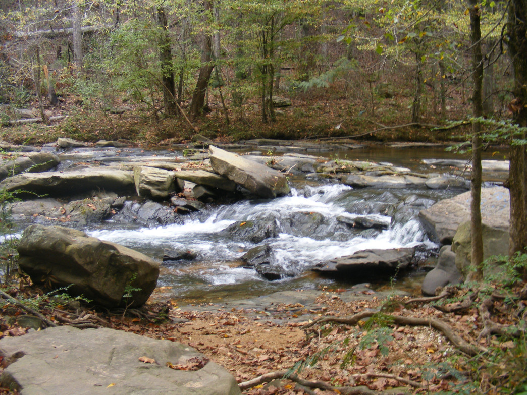 The Turkey Creek Nature Preserve is one of the creations of Alabama's Forever Wild Land Trust.