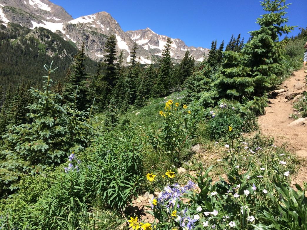 Colorado's high country offers a welcome break from the heat.