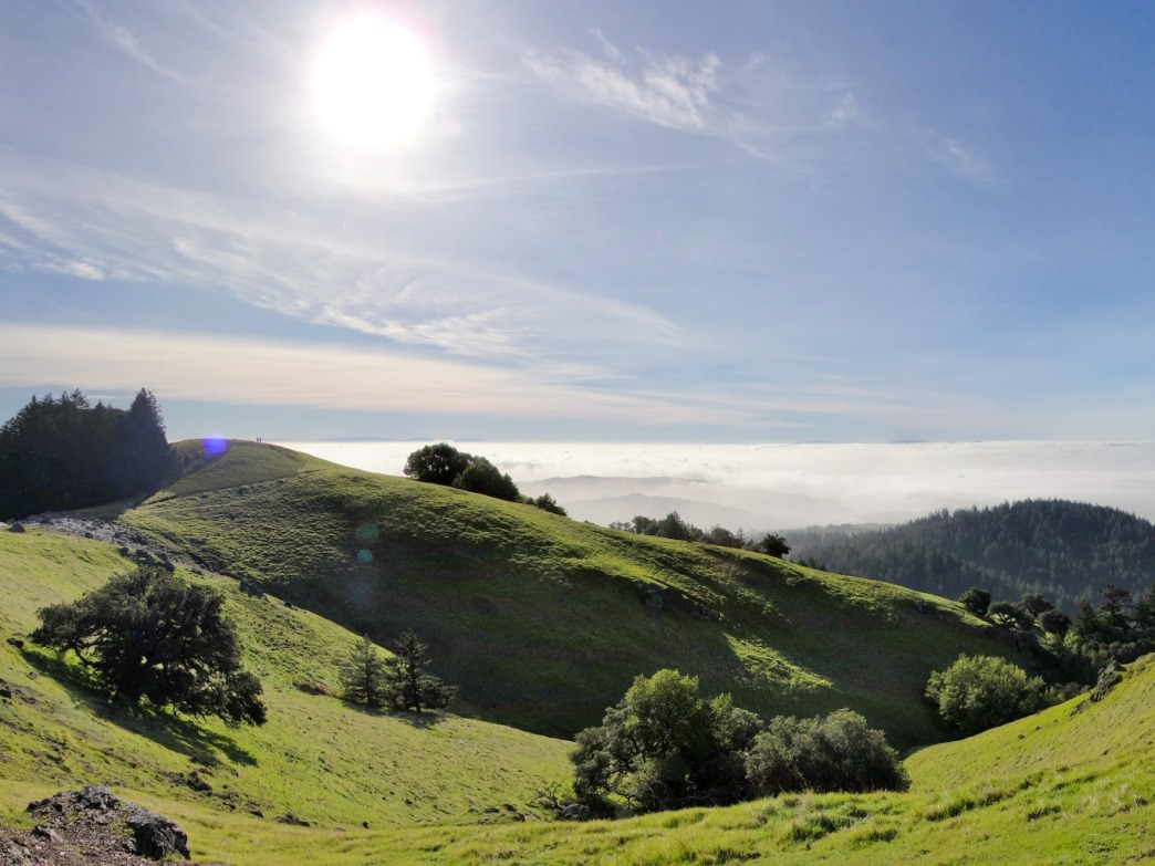 One of Montgomery's favorite places to run in the Bay Area is Mount Tam.
