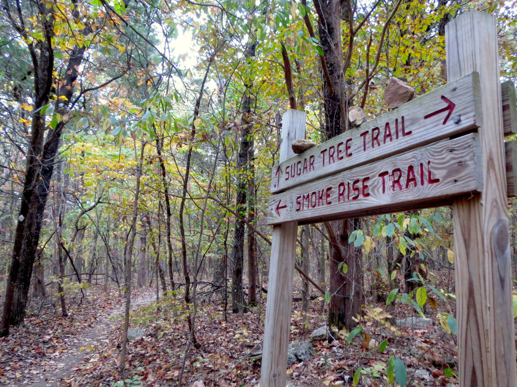 The Smokerise Trail on the Land Trust of North Alabama's Blevins Gap Preserve was once a section of the Trail of Tears. It's a beautiful walk in the woods where you can walk in quiet solitude to reflect.                                    Joe Cuhaj