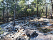 Image for Moss Rock Preserve - Hiking