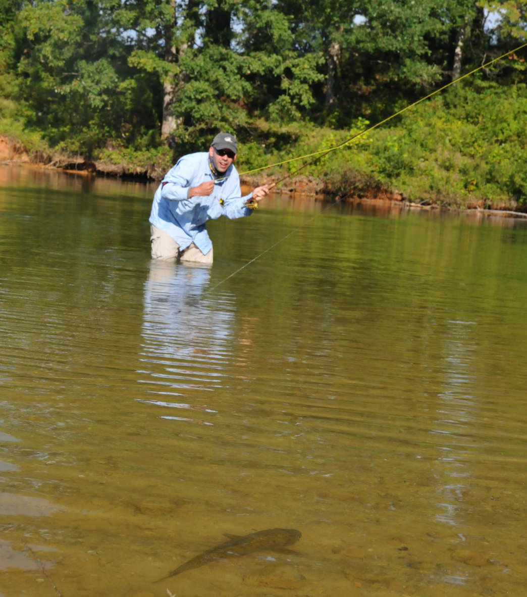 a beginner 39 s guide to fly fishing in charlotte
