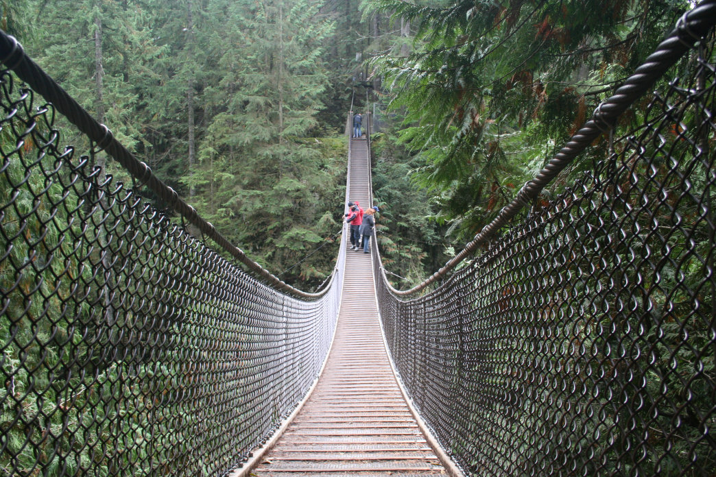 The Lynn Canyon Suspension Bridge offers visitors up-close views of a dense rainforest.