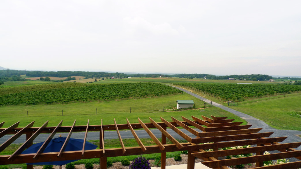 The Barren Ridge Vineyards make for a great cycling destination.