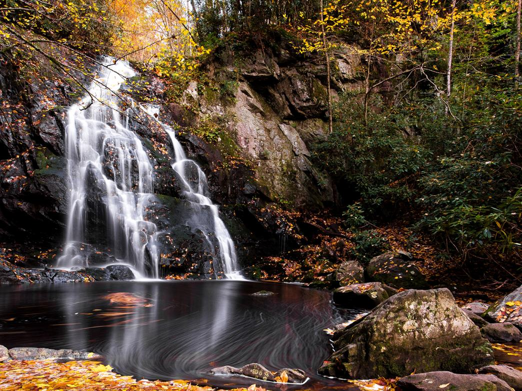 Even on busy park weekends, Spruce Flat Falls has much less traffic than most comparable waterfall trails in the Smokies.
