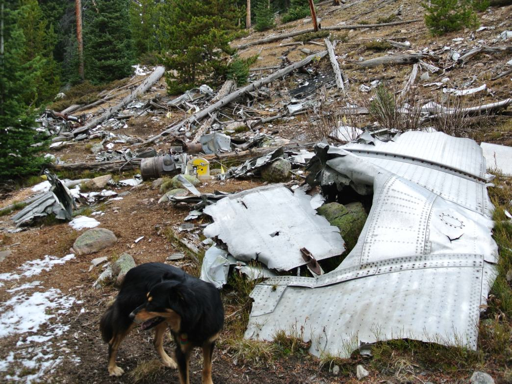 Debris and a memorial in the wreckage.