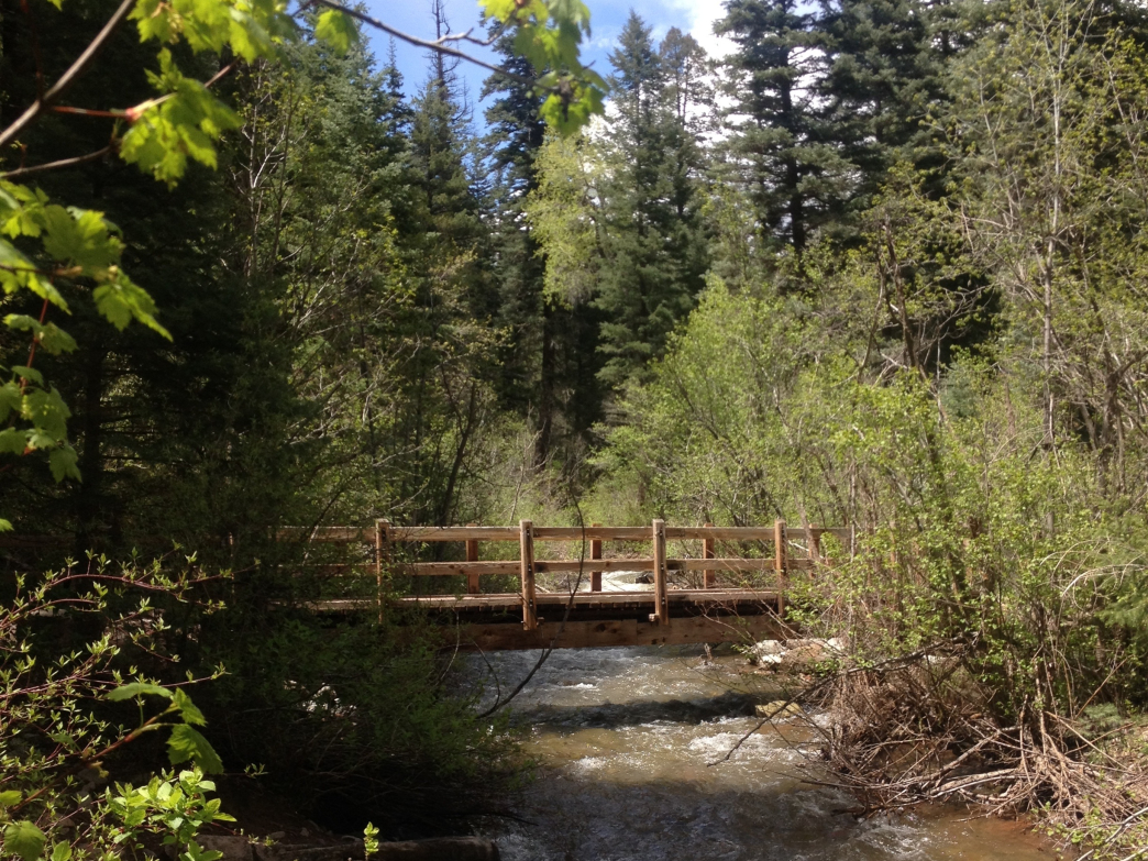 Colorado Trail Junction Creek To Gudy S Rest