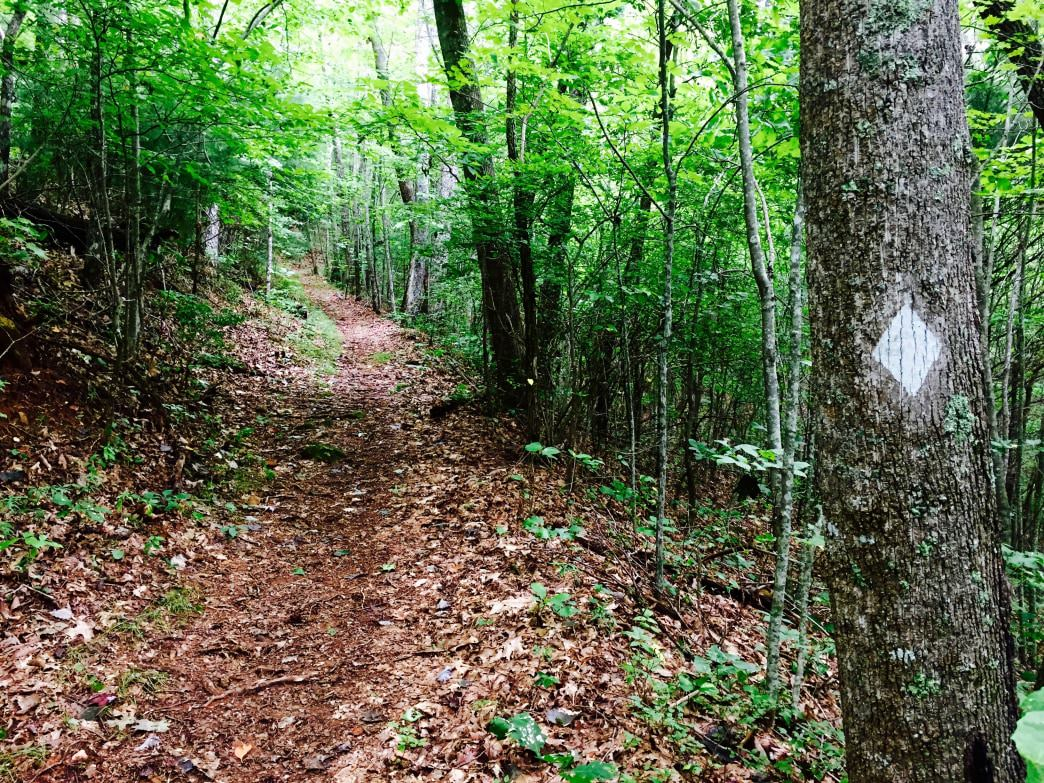 The Benton MacKaye Trail offers hikers more than 300 rugged miles to explore.