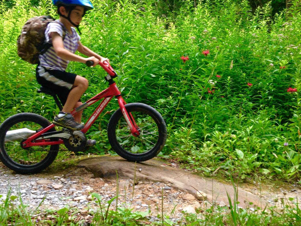 Taking bikes gives your kids something to do around the campground, and is an easier way to get around if your kids get tired from walking.     Joe DeGaetano