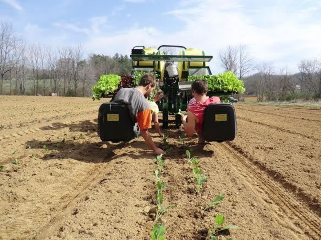 The Southern Appalachian Highlands Conservancy works to preserve farmland, and connect young farmers with  experienced farmers.