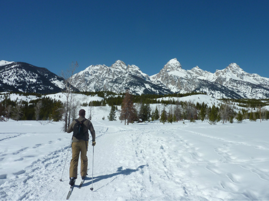 Jackson Hole has plenty of options for cross country skiing.