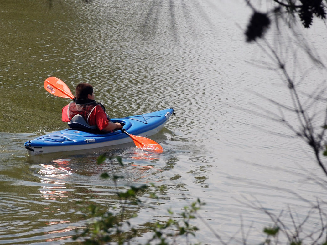 The Land Between the Lakes Recreation Area is a haven for paddlers.
