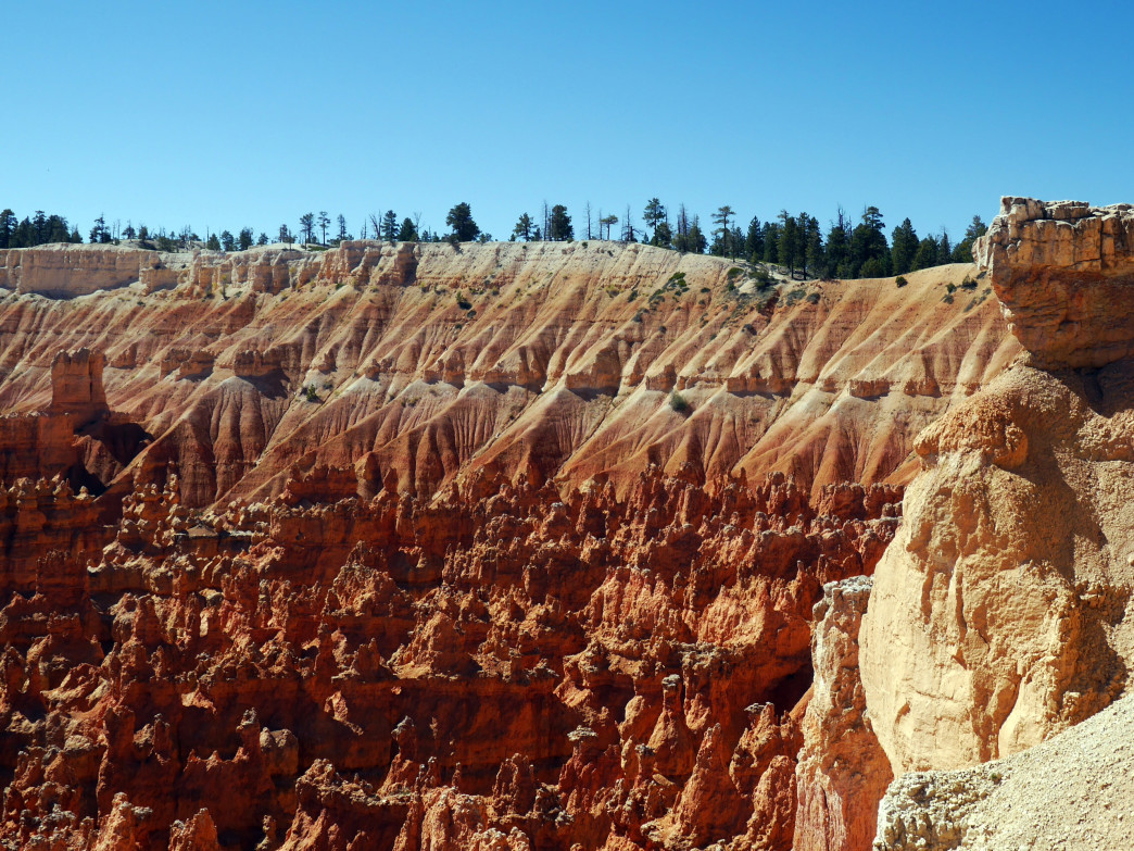 Along the rim of Bryce Canyon.