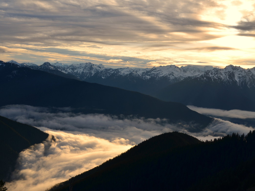 Above the clouds at Hurricane Ridge