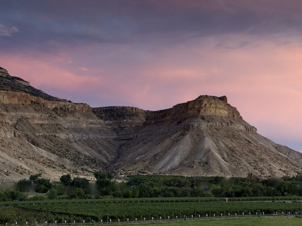 Canyon Wind Cellars is a magical place to see a Colorado winery in action.