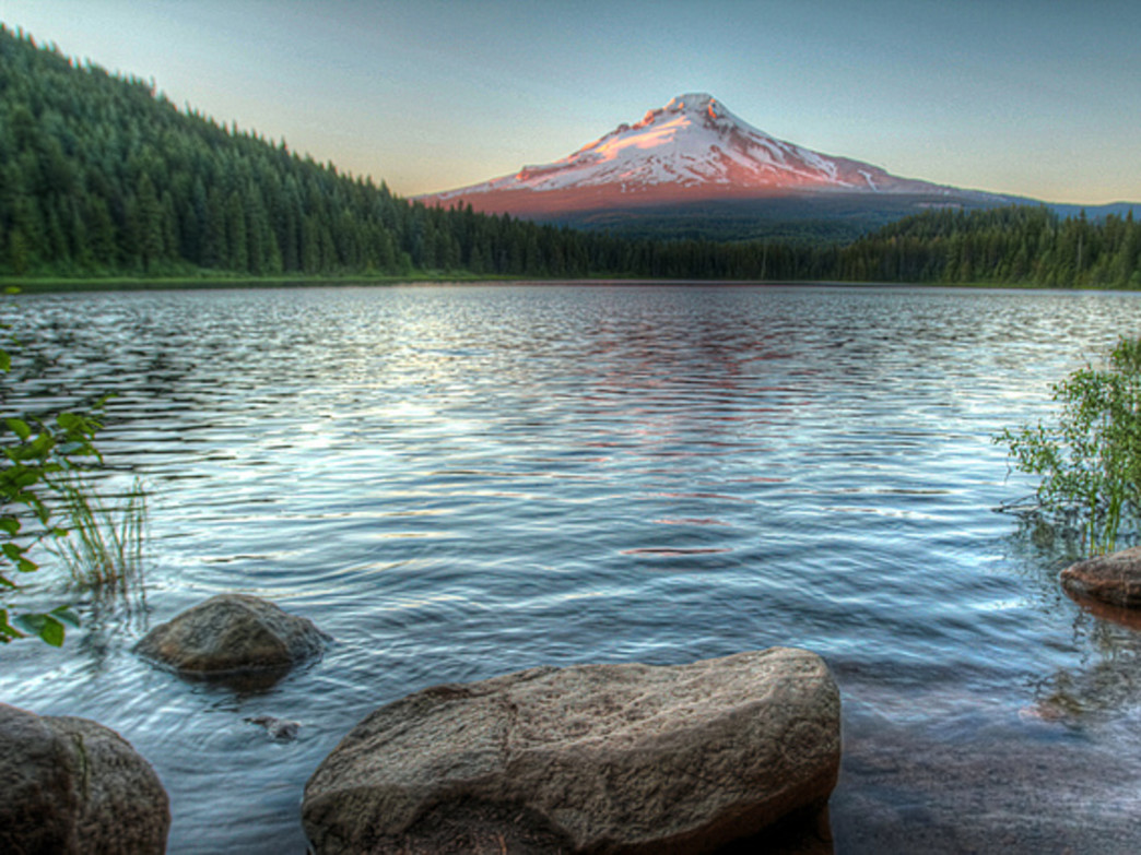 In addition to wildflower displays, Trillium Lake also offers impressive views of Mount Hood.