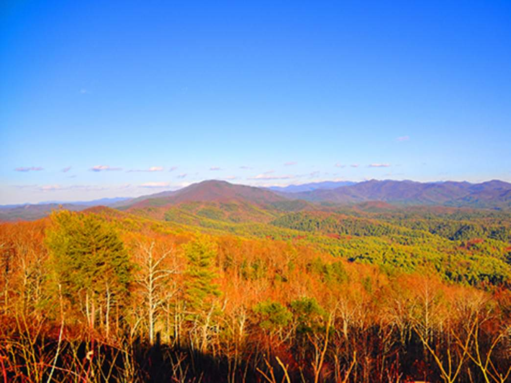 View from Buck Bald.