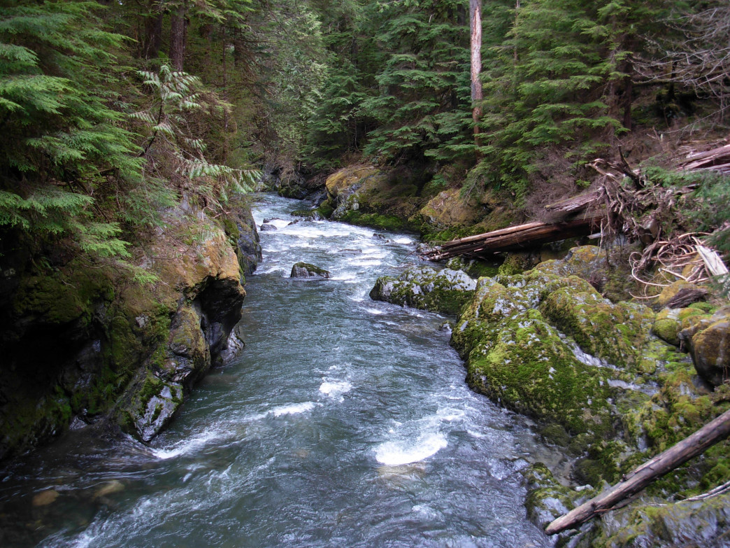 Boulder River Hiking