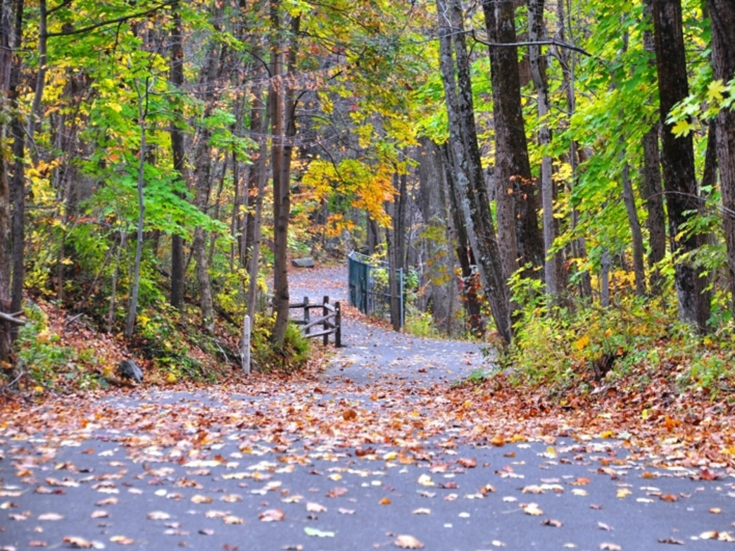 The 20-mile Perkiomen Trail connects to several other trails in the area, offering plenty of long-run options.