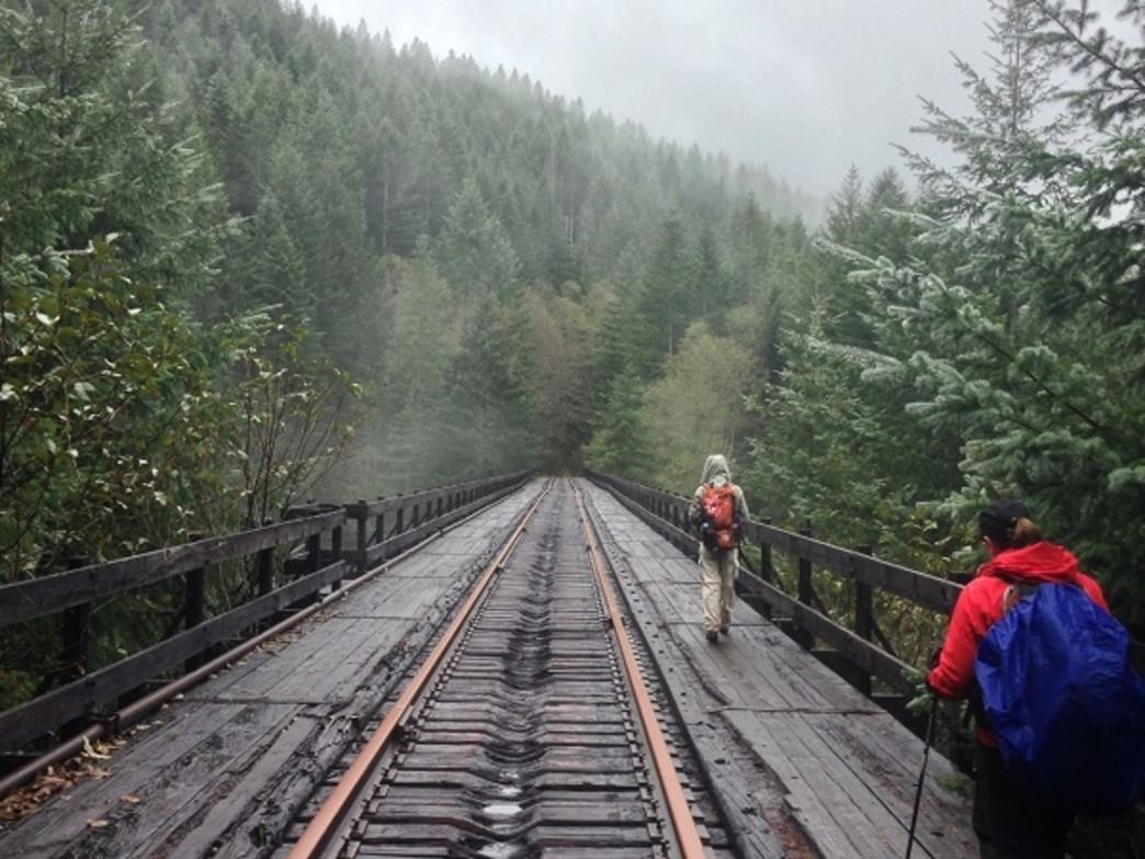 Hikers cross the 167-foot Big Baldwin Trestle over Baldwin Creek.
