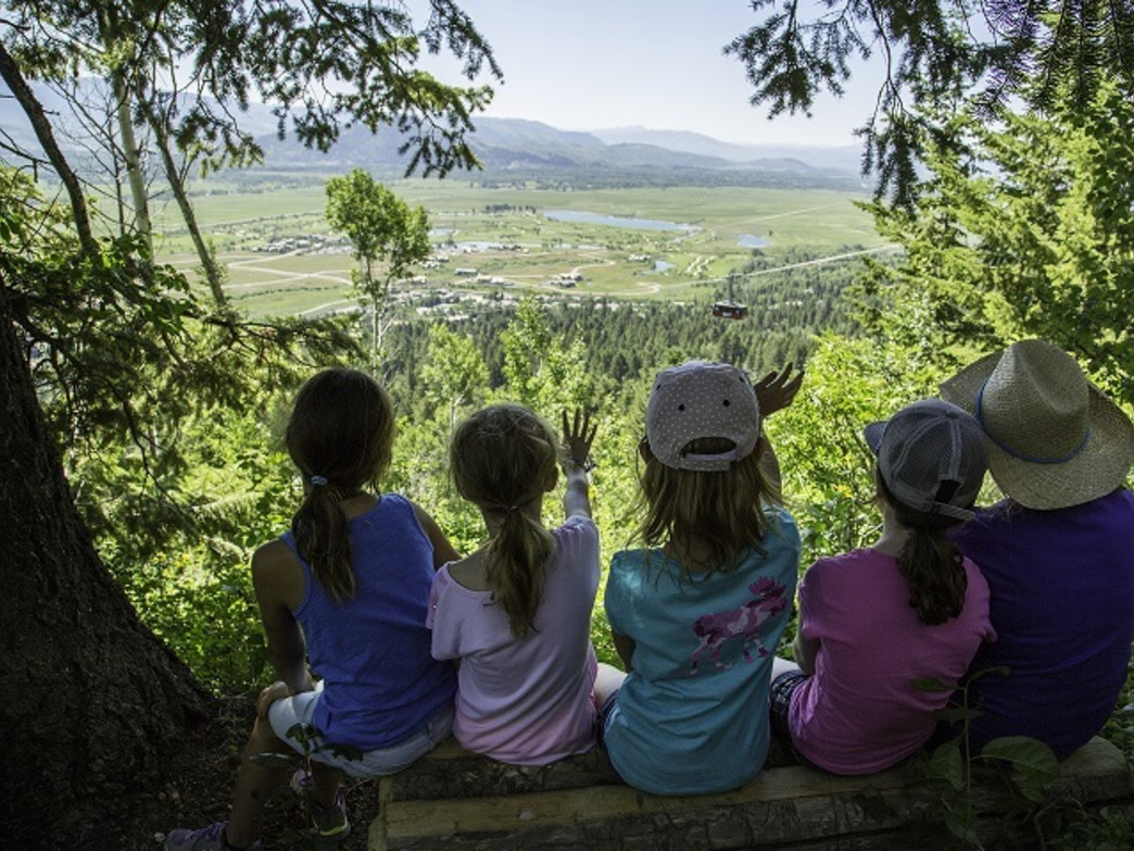 The Wildflower Trail at JHMR offers great places to stop and sneak a peek at incredible views.