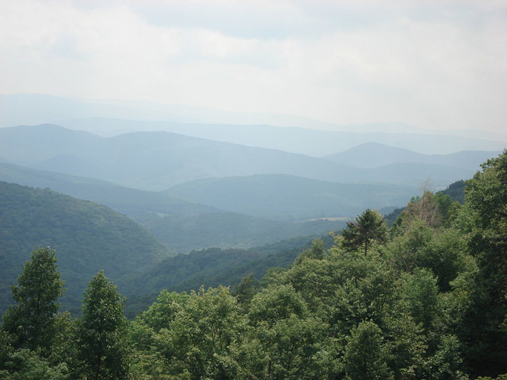 Otter Creek Wilderness is  in the Cheat-Potomac Ranger District of the Monongahela National Forest.
