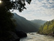 Morning on the Upper Gauley