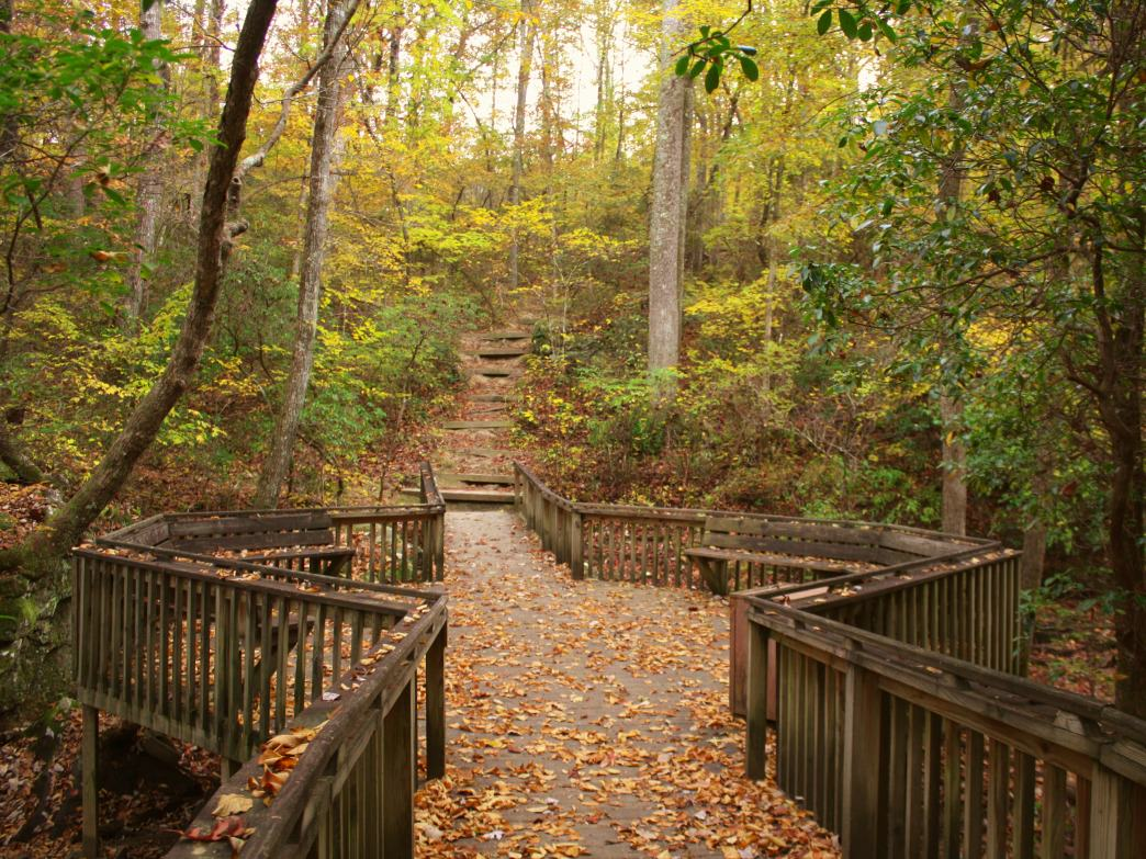 Fall is an excellent time to explore the 25 miles of hiking trails at DeSoto State Park.