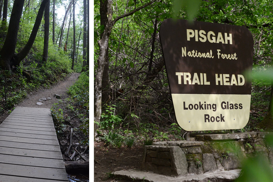 Beginning the hike to the summit of Looking Glass Rock.