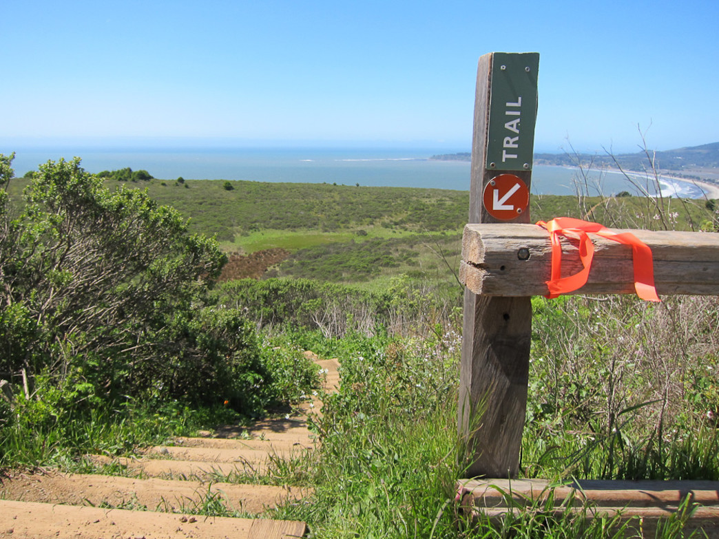 The famous Dipsea Trail offers plenty of stairs and views of the Pacific Ocean.